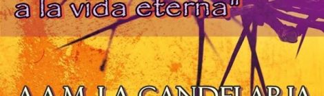 """Concierto Sacro: """"Desde el sufrimiento a la vida eterna"""""""