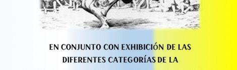 Concierto del Día de Canarias